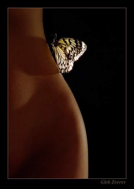Como mariposa en mi piel